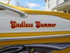 Our Endless Summer