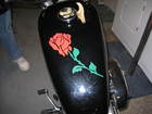 MY sportster tank ROSE