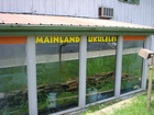 MAINLAND UKES SHOP