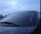 F15dy girls club windshield decal