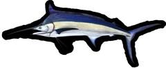 Black Marlin image